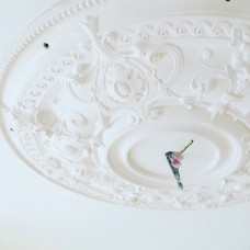 Ceiling Roses  (0)